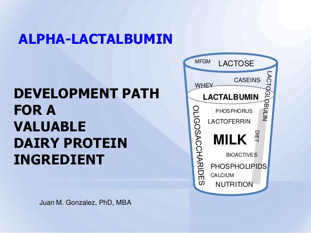 All You Need To Know About Beta Lactoglobulin