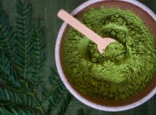 Fascinating Factoids I Bet You Never Heard About Kratom Extract